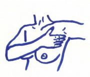 Brust5