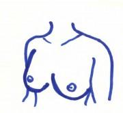 Brust1