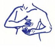 Brust4